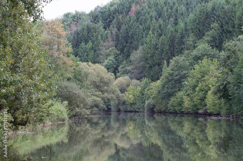 Fotobehang Khaki Canal du Rhône au Rhin