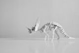 Beautiful dinosaur skeleton, black and white