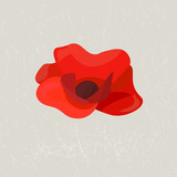 Minimalistic poppy flower on a grunge background.