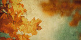 grunge background with autumn leaves - 171480400