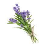 Bunch of lavender flowers isolated on a white - 171492405