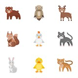 Zoo, toys, hunting and other web icon in cartoon style.Forest, nature, farm, icons in set collection. - 171512626