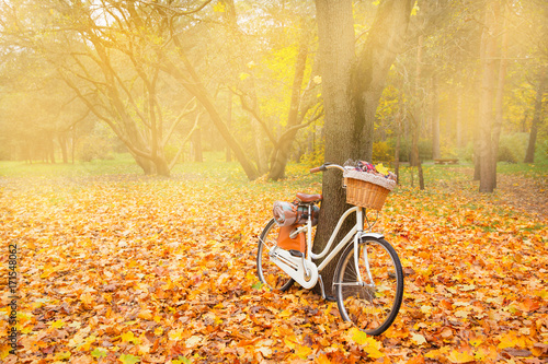 Spoed canvasdoek 2cm dik Fiets vintage bicycle with basket picnic set hot drinks in autumn park background copy space