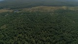 Forest, meadow, swamps and road from above - 171575081