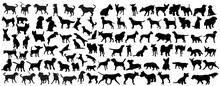 Black Silhouette Of A Dog  Sticker