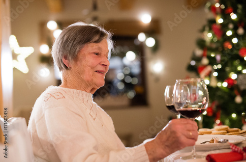 Senior woman celebrating Christmas with her family.