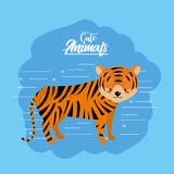 cute tiger animal to natural wildlife vector illustration