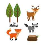 set cute wild animal with natural trees vector illustration