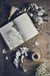Bodegón con libro abierto, ramas de eucalipto y ovillo sobre madera envejecida