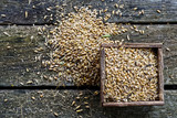 Square wooden box of dry barley next to a pile of barley on rustic wooden board from above. - 171644247