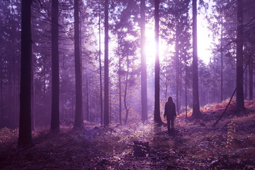 Woman standing in magical purple colored foggy deep forest with sunlight. © robsonphoto