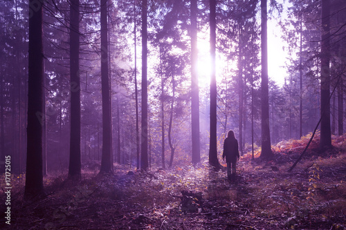 Poster Snoeien Woman standing in magical purple colored foggy deep forest with sunlight.