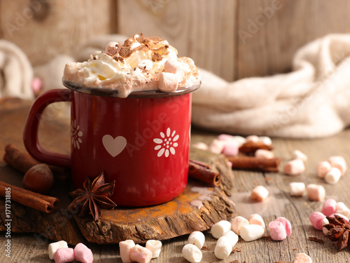 Tuinposter Chocolade hot chocolate with marshmallow