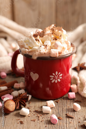 Papiers peints Chocolat hot chocolate with marshmallow