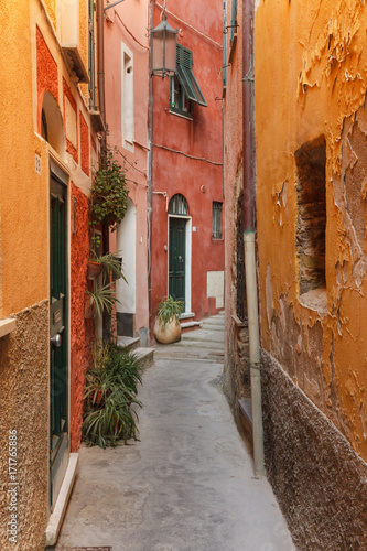 Path between old colored houses in Tellaro, a small fishing village in Italy Poster