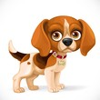 Cute cartoon lop-eared beagle little puppy isolated on a white background