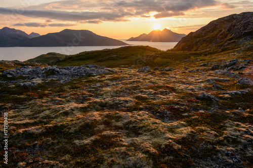 Foto op Aluminium Chocoladebruin Beautiful sunset at the coast of Norway