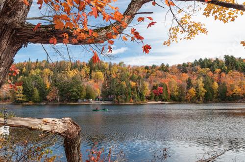 Foto op Plexiglas Canada Autumn landscape