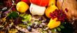 Autumn fruit background