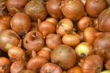 Gemüsemarkt 6 - 171866817