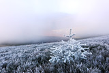 Autumn landscape with frost