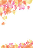Bright Watercolor Fall Autumn Leaves  1 Wall Sticker