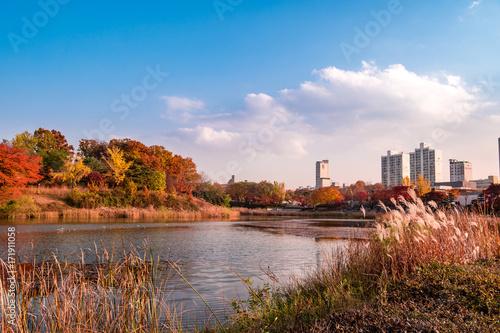 South Korea, Seoul Olympic Park Autumn landscape of lake. Poster