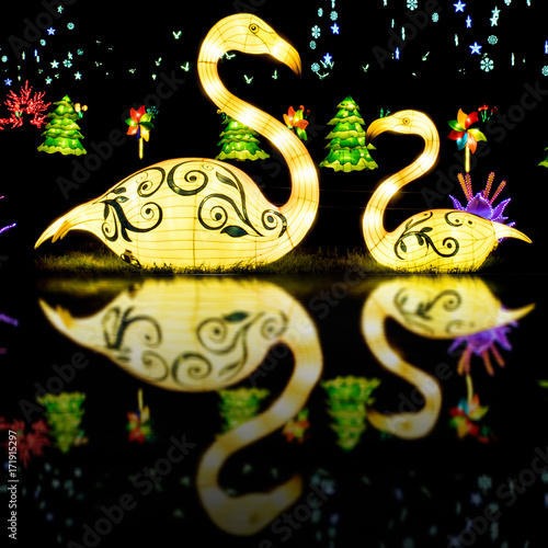 Display of Chinese traditional lanterns - swan family on water