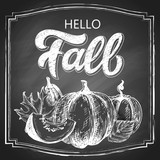 Hello Fall chalk hand lettering, custom calligraphy with maple leaves and pumpkins harvest on black chalkboard background. Vector vintage illustration. - 171921685