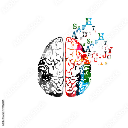Colorful human brain with alphabet letters isolated vector illustration © abstract