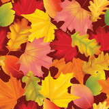 Seamless Colorful Autumn Leaves Background Pattern in Vector - 171937414