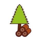 pine tree forest natural flora image vector illustration - 171948468