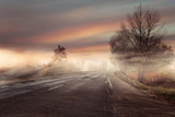 Idyllic and colorful view of the foggy autumn road - 171959848