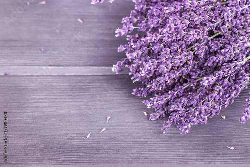 Fototapeta Dried lavender bunches on wooden background. Selective focus, copy space.