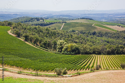 Papiers peints Toscane Beautiful Tuscany landscape with picturesque vineyards in the Chianti region,Tuscany, Italy