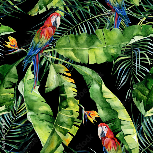 Seamless watercolor illustration of tropical leaves, dense jungle. Scarlet macaw parrot. Strelitzia reginae flower. Hand painted. Pattern with tropic summertime motif. Coconut palm leaves.  - 171988869