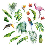 Watercolor illustration of tropical leaves,flamingo bird and pineapple. Toucan and scarlet macaw parrot.Strelitzia reginae flower. Hand painted. Banner with tropic summertime motif. Palm leaves. - 171989046