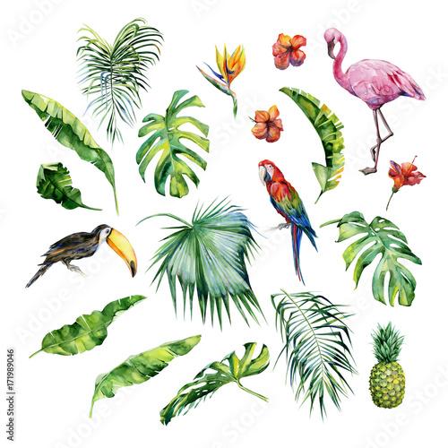 Akwarela ilustracja tropikalnych liści, ptak flamingo i ananasa. Papuga Tukan i scarlet ara.Strelitzia reginae kwiat. Malowane ręcznie. Baner z motywem tropic summertime. Liście palmowe.