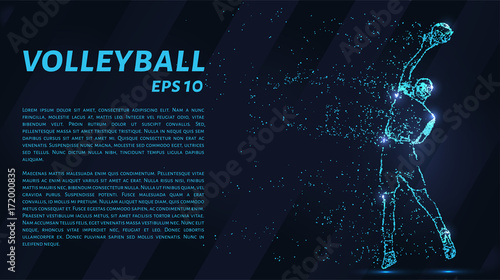 Fototapeta Volleyball, particle divergent composition, vector illustration. Silhouette of a volleyball from particles.