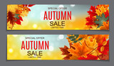 Shiny Autumn Leaves Sale Banner. Business Discount Card. Vector