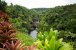Umauma Falls, Hawaii 1