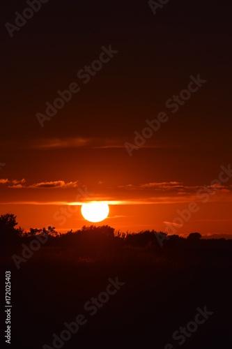 Foto op Canvas Bruin Sunset