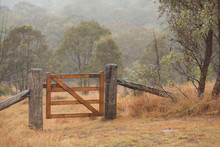 farm gate in the mist