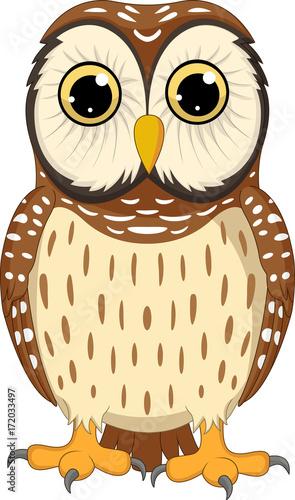 Foto op Plexiglas Uilen cartoon Cartoon owl isolated on white background