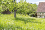rural scenery with barn - 172044043
