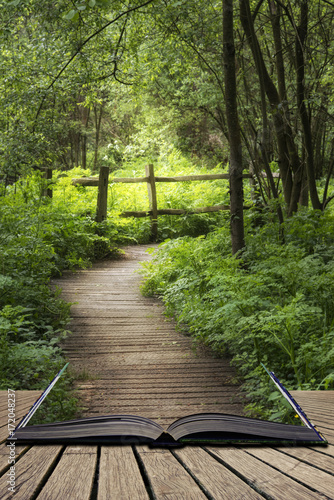 Fotobehang Cappuccino Beautiful landscape image of wooden boardwalk through lush green English countryside forest in Spring concept coming out of pages in open book
