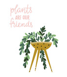 Poster with house plant in the pot with  lettering - Plants are our friends. Tropical plant in the home. Hand drawn illustration in scandinavian style. Vector poster design. - 172066607