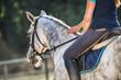 Woman riding a horse on paddock, horsewoman sport wear - 172107069