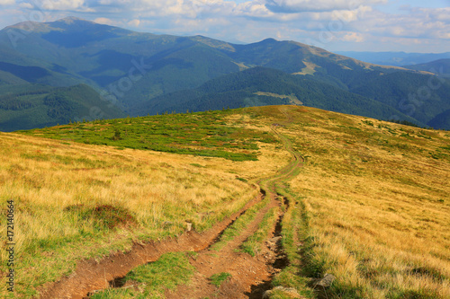 Fotobehang Zomer rut road across mountains meadow