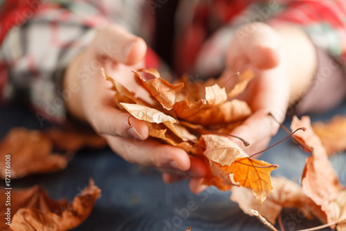 Heap of autumn leaf in hands